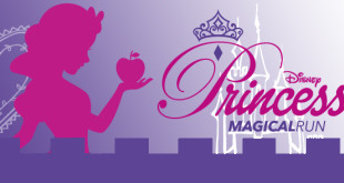 princess magical run banner
